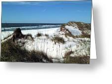 Dunes On St. Joseph Greeting Card