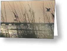 Dunes On The Bay Greeting Card
