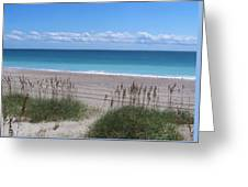 Dunes On The Outerbanks Greeting Card