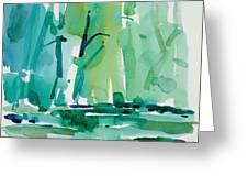 Dunfield-creek-_37-11x14 Greeting Card