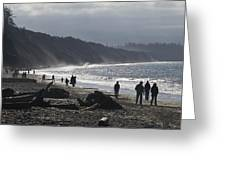 Dungeness Spit Greeting Card