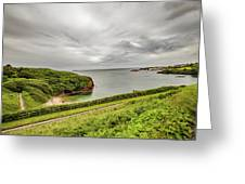 Dunmore East Cliffs Greeting Card
