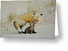 Dunr Fox Father And Child Greeting Card
