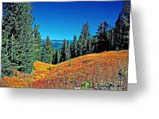 Dunraven Pass Greeting Card