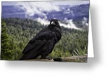 Dunraven Raven Greeting Card