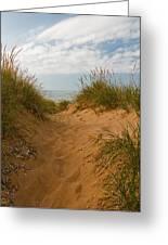Nova Scotia's Cabot Trail Dunvegan Beach Dunes Greeting Card