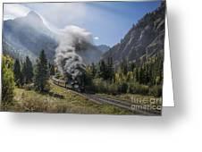 Durango And Silverton Train At Elk Park Wye Greeting Card