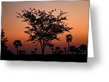 Dusky Tree Greeting Card