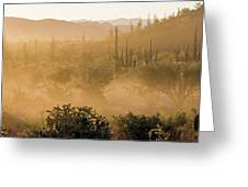 Dust Storm In The Desert Greeting Card