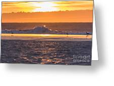 Dutch December Beach 003 Greeting Card