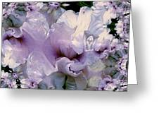 Duvet Iris Fractal Greeting Card