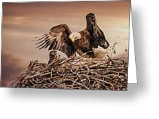 Bald Eagle And Eaglet In Nest Greeting Card