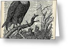 Eagle And Its Nest  Greeting Card