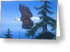 Eagle At Treetop Level Greeting Card