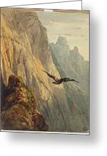 Eagle Circling Before A Cliff Face Greeting Card