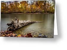 Eagle Creek Park Greeting Card