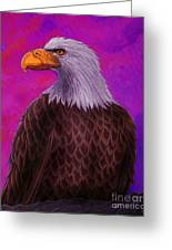 Eagle Crimson Skies Greeting Card