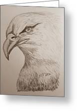 Eagle Drawing 1 Greeting Card