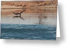 Eagle Fishing Greeting Card