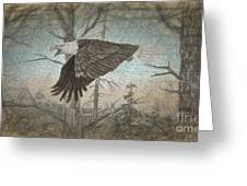 Eagle  In Forest Greeting Card