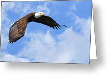 Eagle In The Clouds Greeting Card