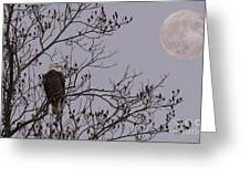 Eagle Lookout Greeting Card
