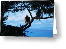 Eagle - Mt Baker - Eagles Nest Greeting Card