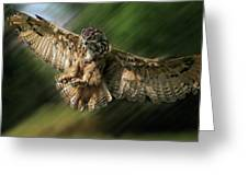 Eagle Owl Landing Greeting Card