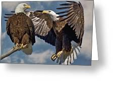 Eagle Pair 3 Greeting Card