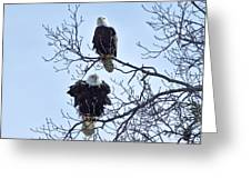 Eagle Pair Greeting Card