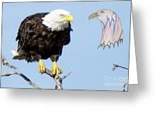 Eagle Reflection Greeting Card