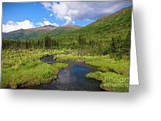 Eagle River- Alaska Greeting Card