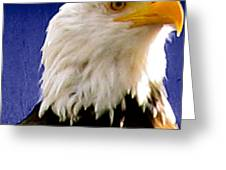 Eagle Sight Greeting Card