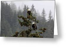 Eagles On Watch 1 Greeting Card