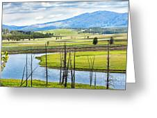 Eagles View, Hayden Valley, Yellowstone Greeting Card