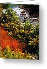 Early Autumn Along The Naugatuck Greeting Card
