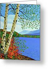 Early Autumn Birches Greeting Card