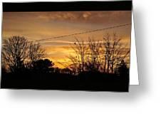 Early Bird Before Dawn Greeting Card