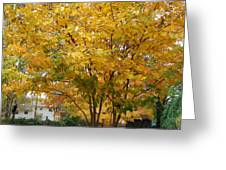 Early Fall Greeting Card