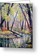 Early Fall On East Canyon Creek Greeting Card