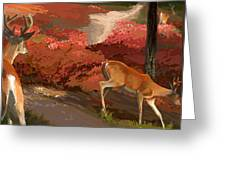 Early Fall Whitetail Greeting Card
