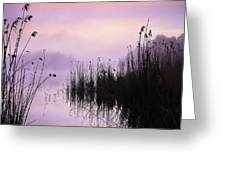 Early Morning By The Pond  Greeting Card