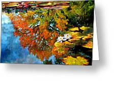 Early Morning Fall Colors Greeting Card