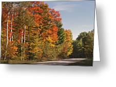 Early Morning In Door County Greeting Card by Sandra Bronstein