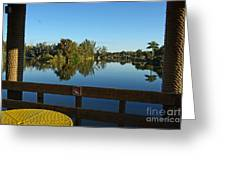 Early Morning In Lakes Park Fort Myers  Greeting Card