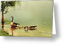 Early Morning Lessons Greeting Card