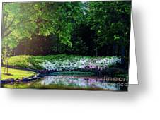 Early Morning Light At The Azalea Pond Greeting Card