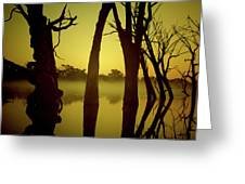 Early Morning Mist At The River Greeting Card
