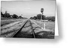 Early Morning On The Rail  Greeting Card