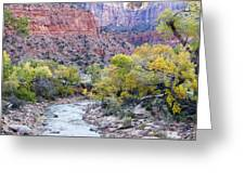 Early Morning On The Virgin River Greeting Card